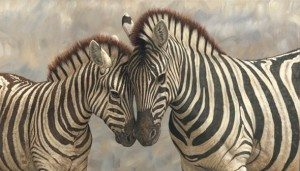 Attuning the Zebras with Reiki Fur Babies