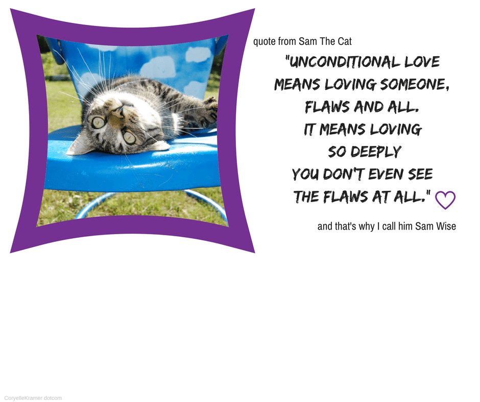 quote from a cat