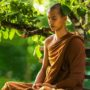 meditation-and-alignment