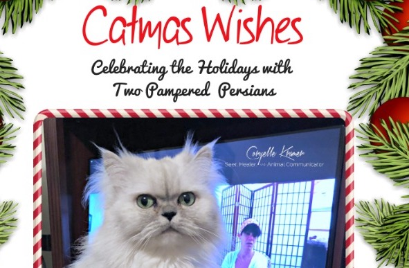 Catmas Wishes_Coryelle